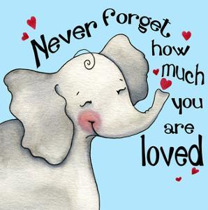 Never Forget Elephant by Jennifer Nilsson