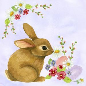 Spring Rabbit 2 by Jennifer Nilsson
