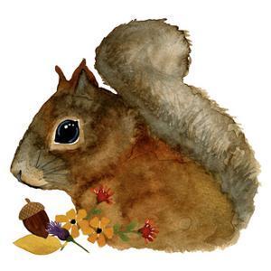 Squirrel by Jennifer Nilsson
