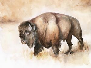 Buffalo Roam I by Jennifer Parker