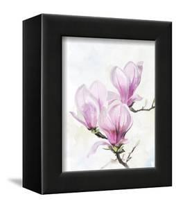Magnolia Blooms II by Jennifer Parker