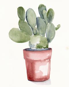 Potted Succulent I by Jennifer Parker