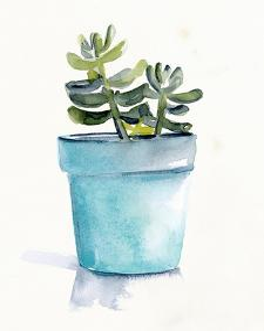 Potted Succulent II by Jennifer Parker
