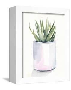Potted Succulent III by Jennifer Parker