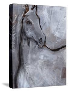 White Horse Contour I by Jennifer Parker