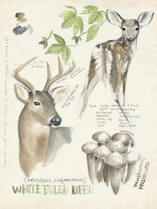 Wildlife Journals IV by Jennifer Parker