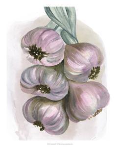 Garlic Braid II by Jennifer Paxton Parker