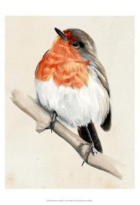 Little Bird on Branch IV by Jennifer Paxton Parker