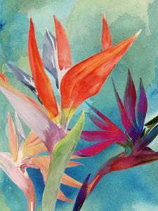 Vivid Birds of Paradise I by Jennifer Paxton Parker
