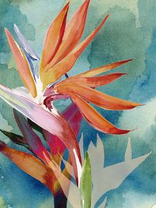 Vivid Birds of Paradise II by Jennifer Paxton Parker