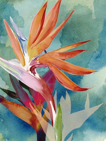 Vivid Birds of Paradise II
