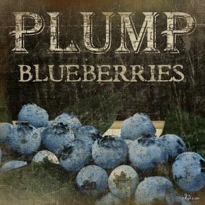 Plump Blueberries by Jennifer Pugh