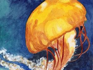Jellyfish by Jennifer Redstreake Geary