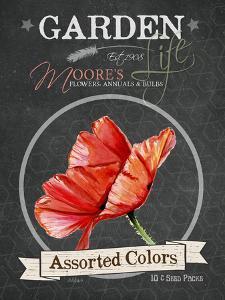 Redstreake Chalkboard Assorted Colors by Jennifer Redstreake