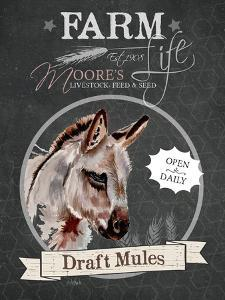 Redstreake Chalkboard Mule by Jennifer Redstreake