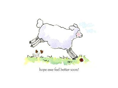 Ewe-Hope feel better by Jennifer Zsolt
