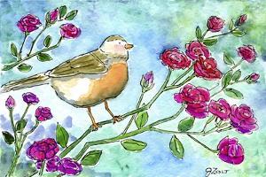 Robin Roses by Jennifer Zsolt