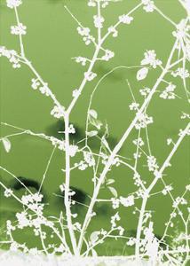 Autumn Branch (green) by Jenny Kraft