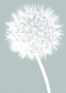 Dandelion (blue) by Jenny Kraft