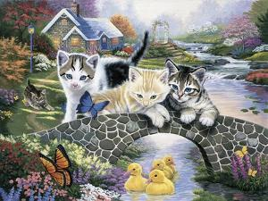 A Purrfect Day by Jenny Newland