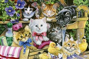 Bathtime Kittens by Jenny Newland
