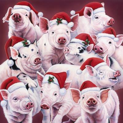 Christmas Piggies