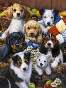 Country Bumpkin Puppies by Jenny Newland
