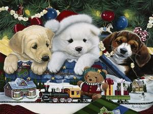 Curious Christmas Pups by Jenny Newland