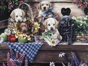 Five Puppies by Jenny Newland