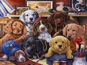 Grandpa's Puppies by Jenny Newland