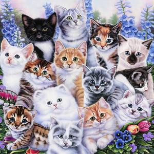 Kitten Collage by Jenny Newland