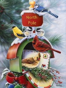 North Pole by Jenny Newland