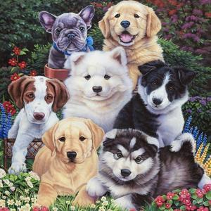 Precious Puppies by Jenny Newland