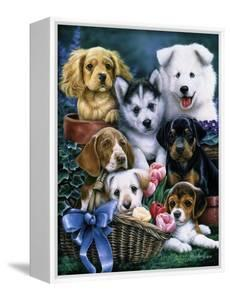 Puppies by Jenny Newland