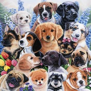 Puppy Collage by Jenny Newland