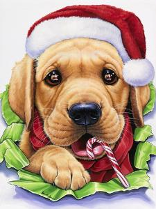 Santa by Jenny Newland