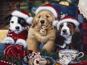 Sawry Santa Paws by Jenny Newland