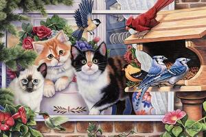 Springtime Wonders by Jenny Newland
