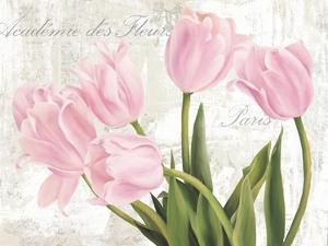 Academie des Fleurs by Jenny Thomlinson