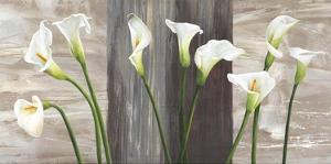 Country Callas by Jenny Thomlinson