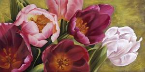 My Tulips by Jenny Thomlinson