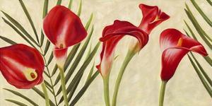 Red Callas by Jenny Thomlinson
