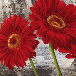 Red Gerberas I by Jenny Thomlinson