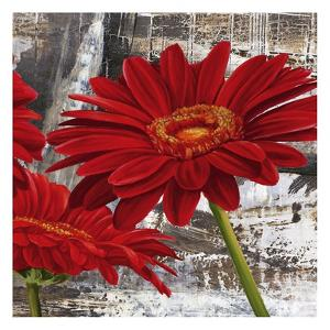 Red Gerberas II by Jenny Thomlinson