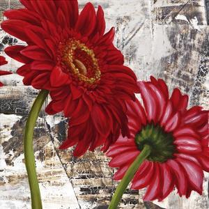Red Gerberas III by Jenny Thomlinson