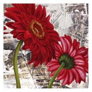 Red Gerberas III by Jenny Thomlinson