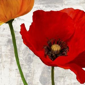 Summer Poppies I by Jenny Thomlinson