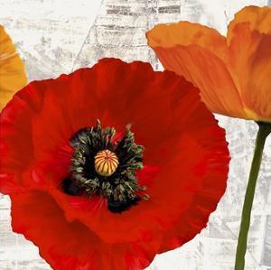 Summer Poppies III by Jenny Thomlinson