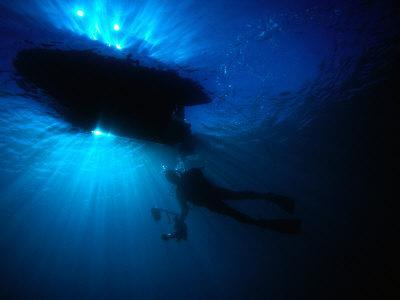 Diver Underneath Boat with Sunlight, Leigh, New Zealand
