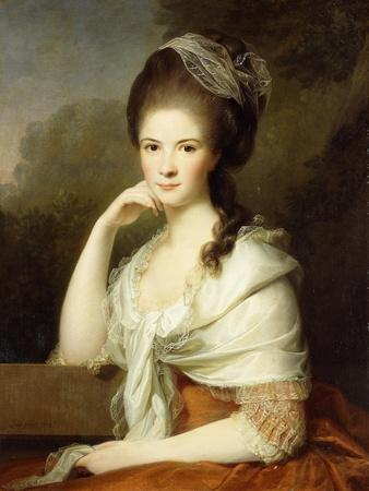 Portrait of a Lady, Seated Half-Length, Wearing a Brown Dress and a White Shawl, 1778